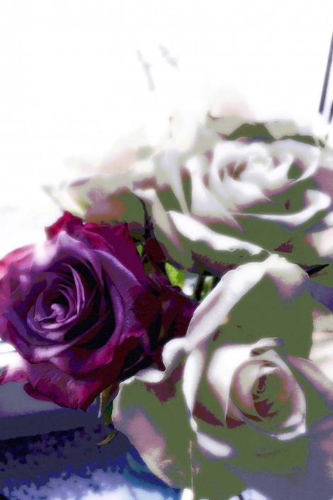 Popart romantische Rosen